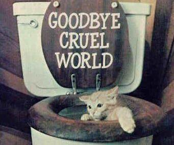 funny pictures goodbye cruel world i0a מכתב פרידה מקליקבנק